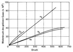Löslichkeit von Gasen – Grundlagen und Beispiele